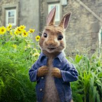 PC Police Target 'Peter Rabbit' Cartoon for an Insane Reason
